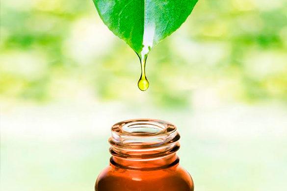 Aromaterapia & Terapias Florais